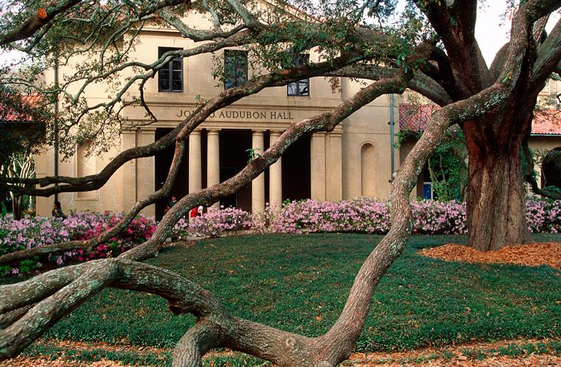 1914 Audubon Hall_1