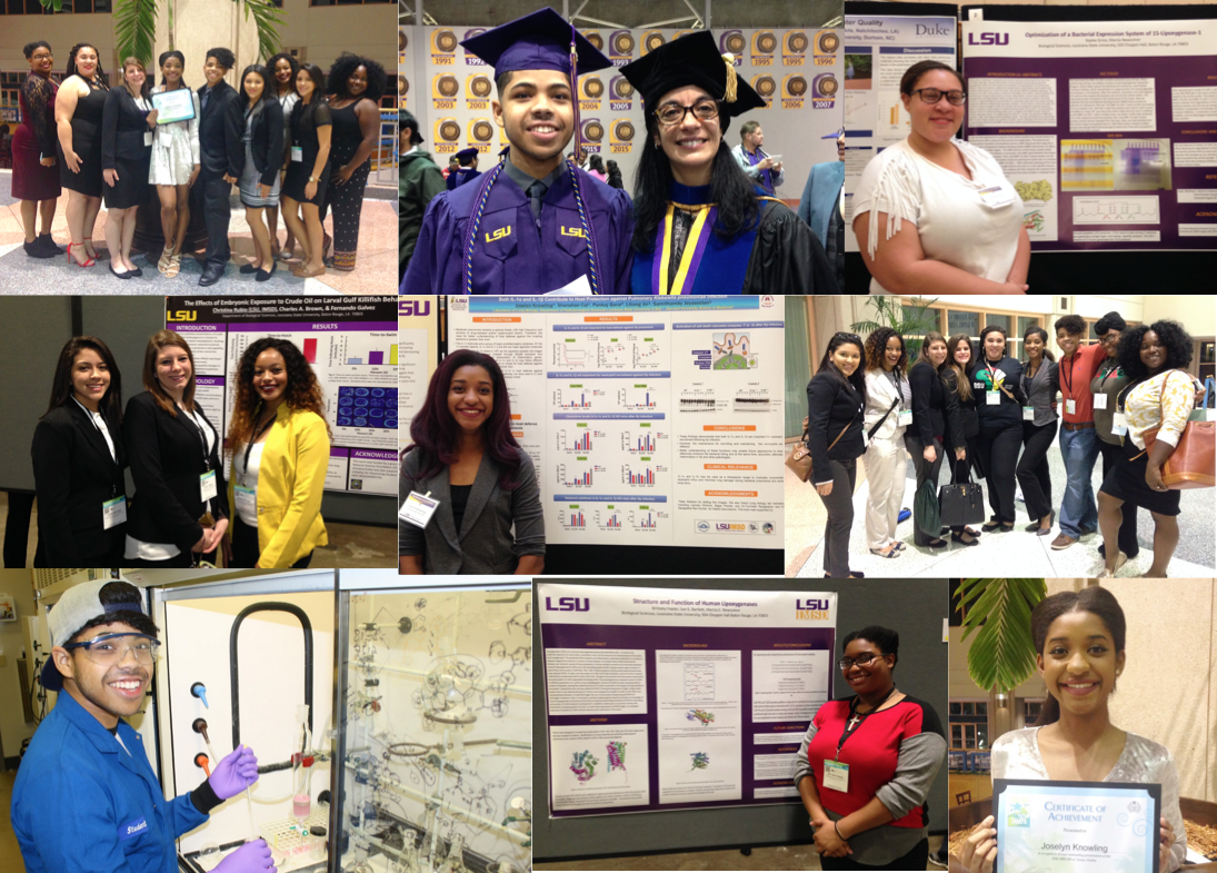 Photo collage of IMSD students during 2016-2017