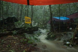 Image from a campsite